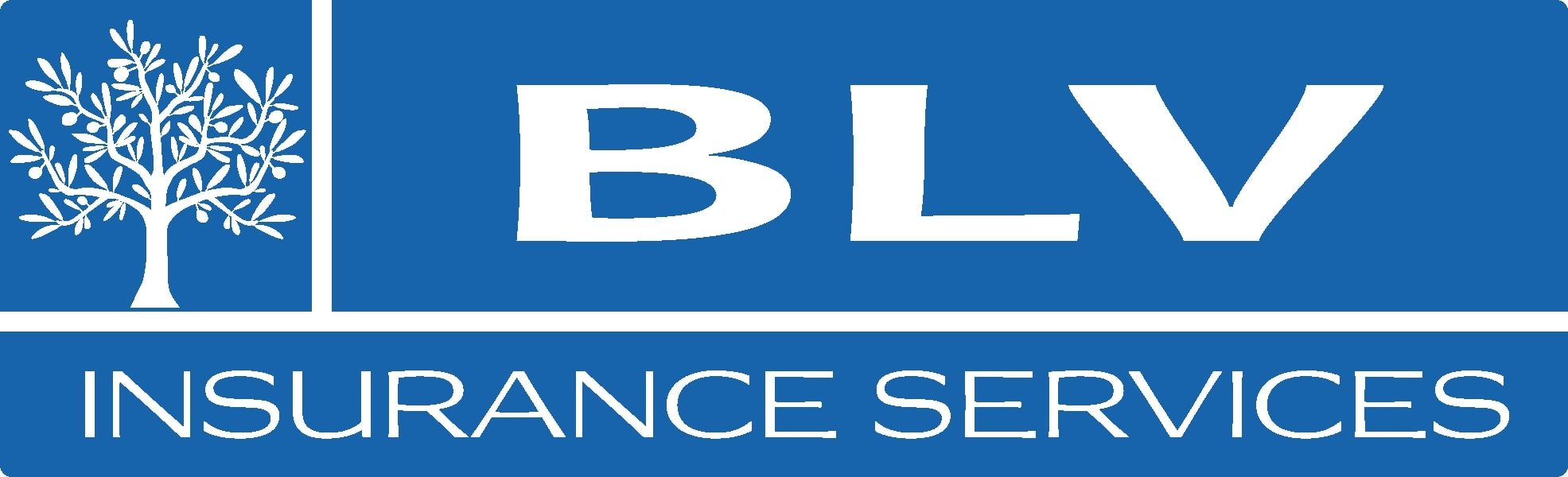 BLV Insurance Services